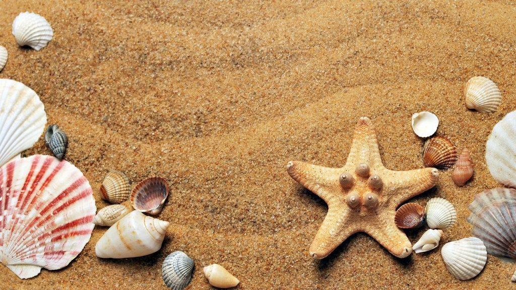 Каникулы на море