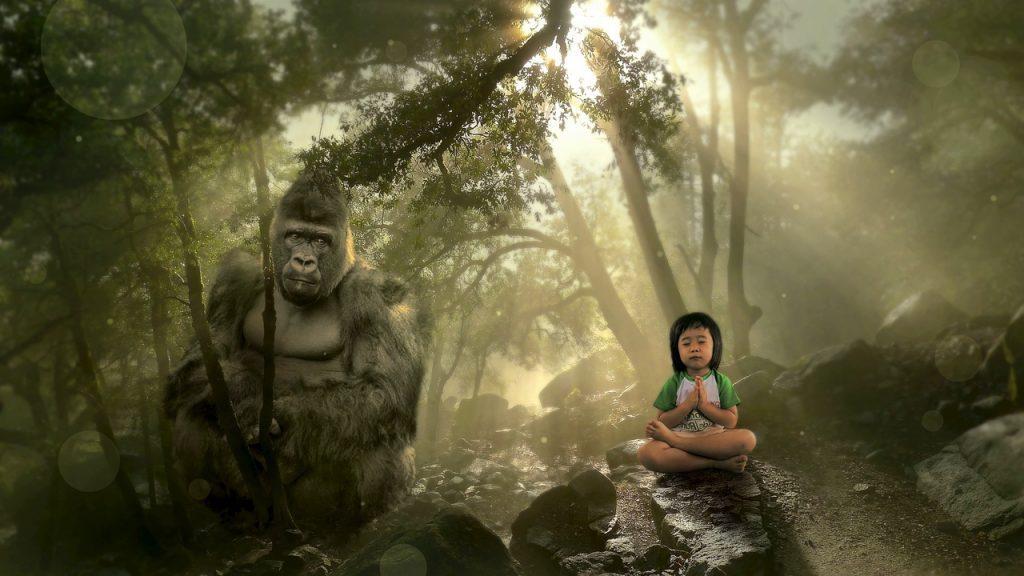 Кио и горилла Тулула