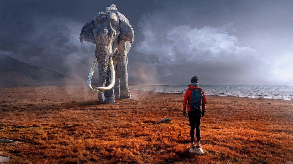 Притча о мудром слоне